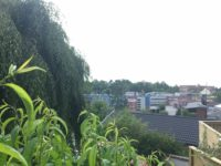 Långt bort i horisonten finns ett blått hus, bakom det ligger huset som ska få nytt staket.