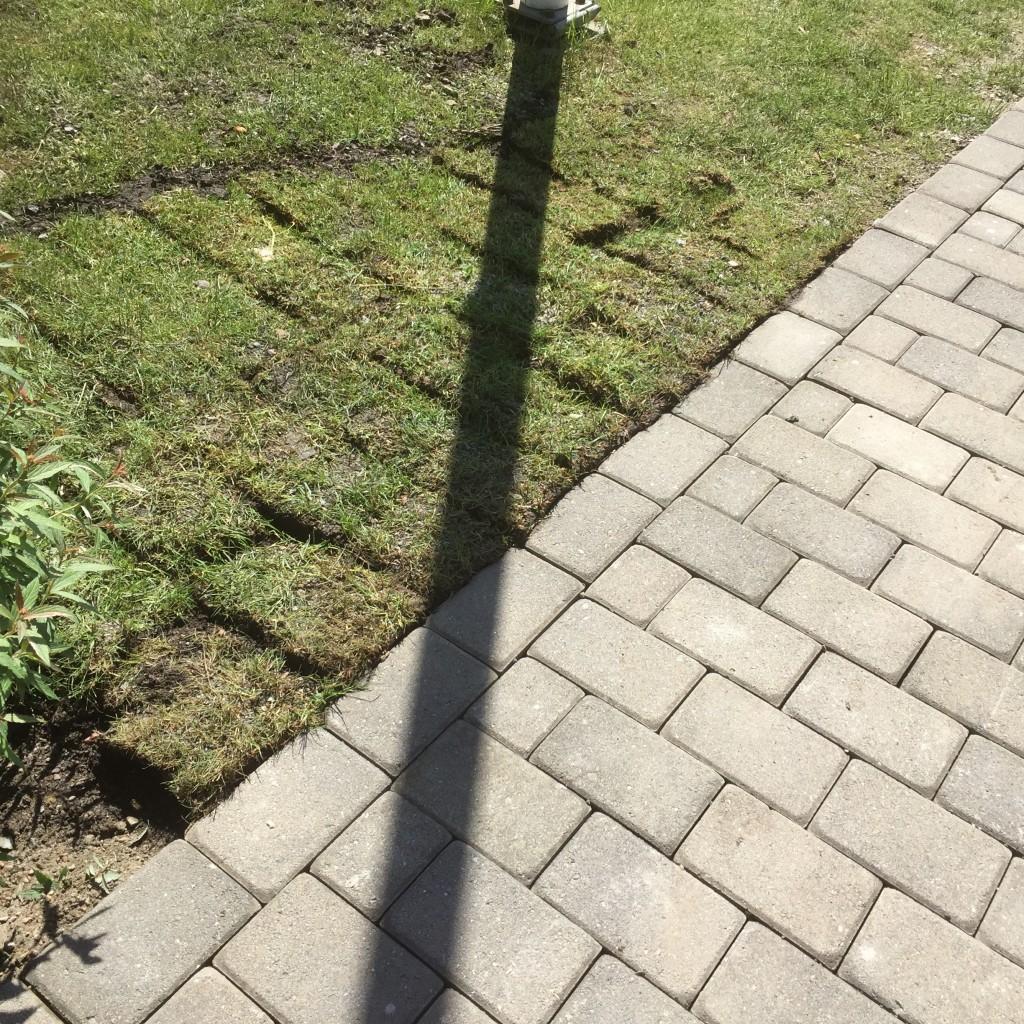 Men de lyfte även gräsmattan till rätt nivå!