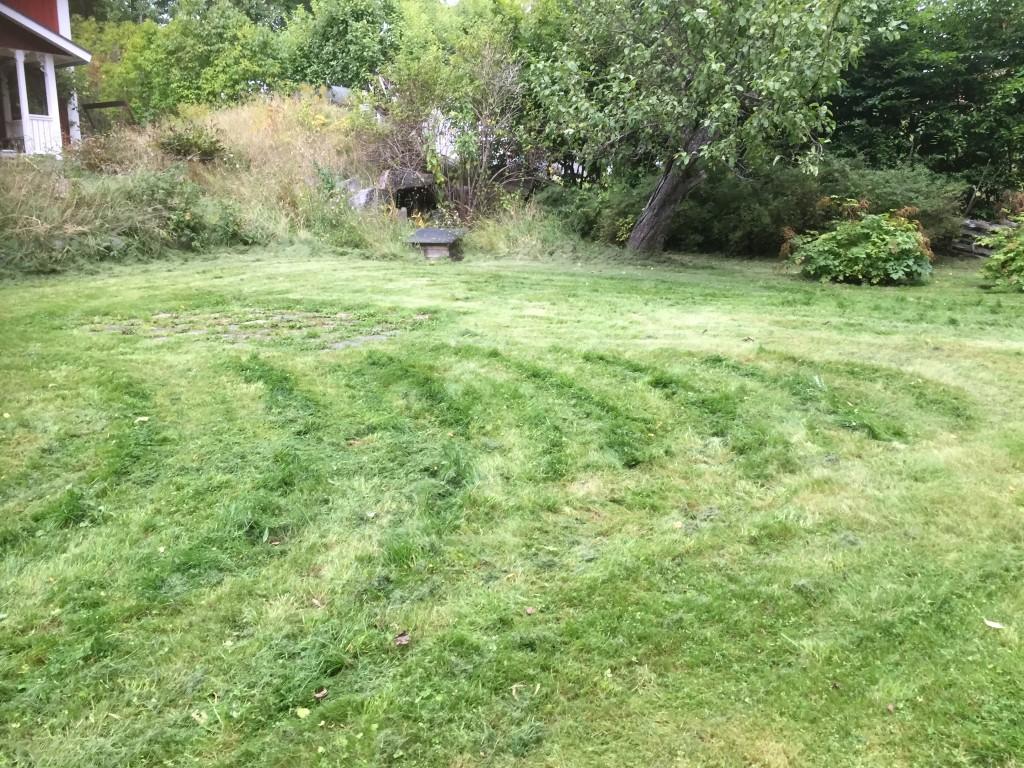 Vår punkklippta gräsmatta