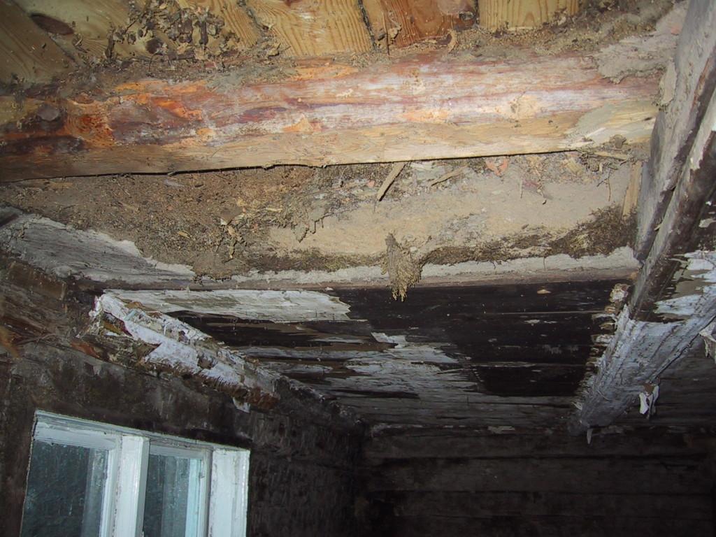 Så här såg taket ut i köket när vi tagit bort några av takplankorna